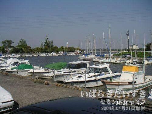 霞ヶ浦 土浦入り<br>休日ともなると、この土浦入り周辺では釣り糸をたらす人たちで賑わうことがあります。が、今日は平日。