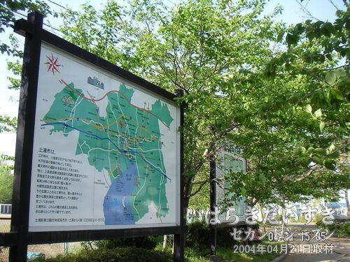 """プロムナードの木漏れ日<br>川口運動公園を取り巻く、プロムナードの木々が緑いっぱい。まさに""""春!""""って感じです。"""