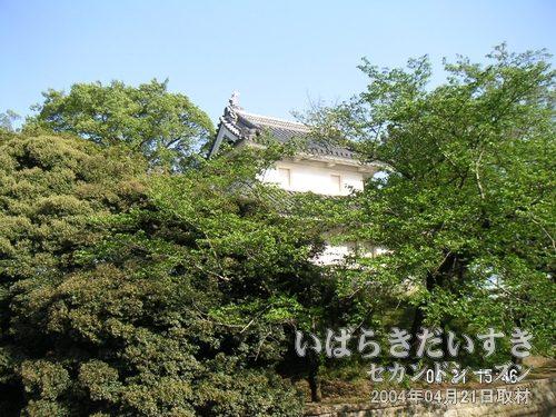 土浦城 東櫓<br>木々の間から見えるお城が土浦城(東櫓)です。