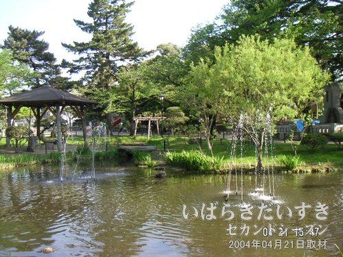 亀城公園の池<br>今でこそ池ですが、かつては桜川とつながり、霞ヶ浦へと繋がっていました。