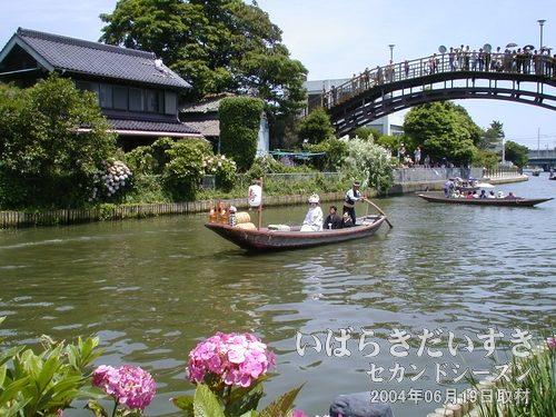 嫁入り舟<br>昔、潮来地方ではお嫁さんが嫁ぐとき、舟に乗って出向いたそうです。舟はここ前川から常陸利根川まで出てイベントは終了します。