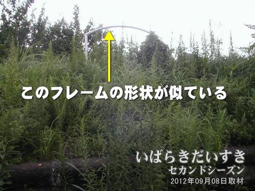 旧・筑波鉄道 常陸小田駅の駅名標フレーム<br>2002年「筑波-土浦サイクリング(輪行)」のときに撮影。