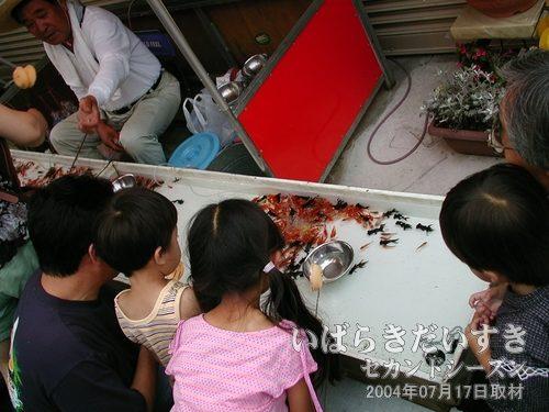 金魚すくい<br>お祭りの定番、金魚すくいなどの出店も出ています。