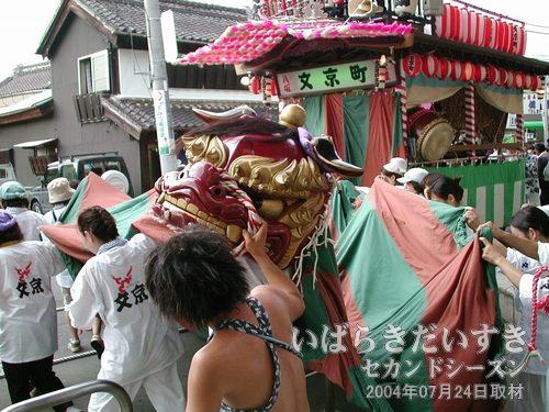 「文京町」の山車(屋台)<br>獅子が荒々しく踊りました。