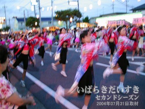 アートスタジオさん<br>茨城県南の舞姫集団です。県南イベントの様々な場所でお目にかかれます。