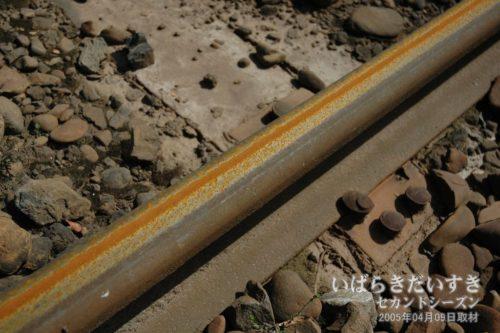 【 錆が浮く、日立電鉄線のレール 】<br>電車が入線してきそうなレールには、使われなくなって久しく、錆が浮いています。