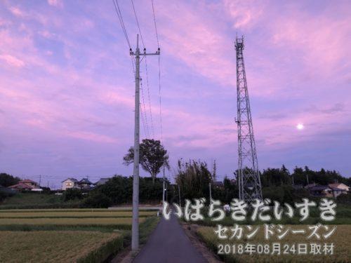 空が紫色に染まる、つくばみらい市小張<br>2006年の訪問時、こんな感じのたんぼ道を通った記憶があります。台風一過で、ときおり強い風が吹きます。