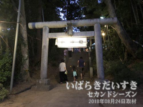 この鳥居から、愛宕神社境内に入る。