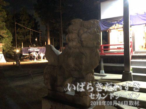 小張愛宕神社 狛犬 吽形