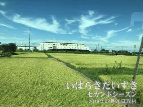 日清食品の工場 / 煙突がカップヌードルの意匠<br>下り常磐線、まもなく藤代駅というタイミングで進行方向左手に日清食品の工場があります。