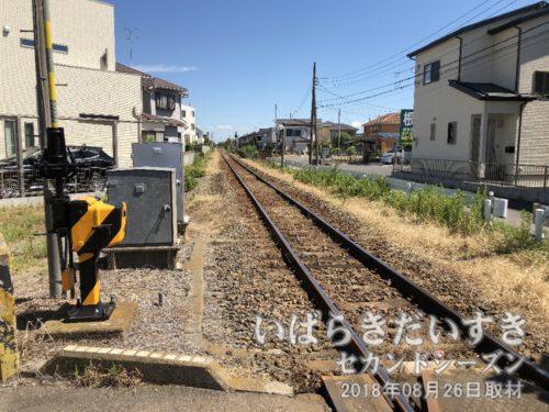 関東鉄道竜ヶ崎線を渡る。写真は佐貫駅方面を望む。