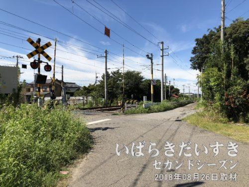 常磐線 富士の下踏切を渡る。