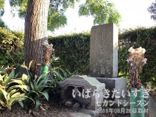 専称寺〔茨城県つくばみらい市上平柳〕<br>間宮林蔵が樺太に赴くに辺り、「生きて帰れぬかもしれない」と自ら建てた生前墓地。墓石の文字「間宮林蔵墓」も自ら揮毫したもの。