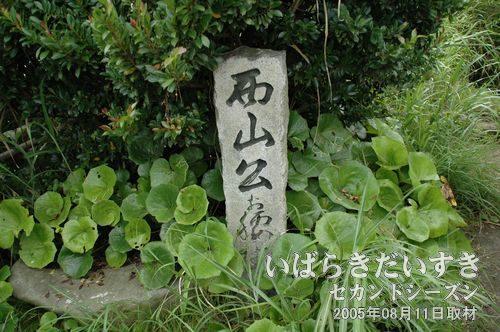 西山公が座った石(左)<br>徳川光圀(西山公)が座った石があります。