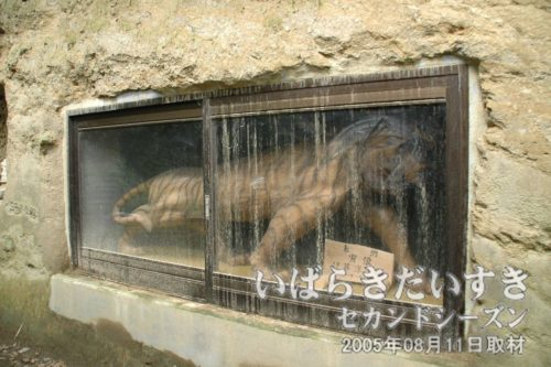 八幡神社 拝殿裏の虎像