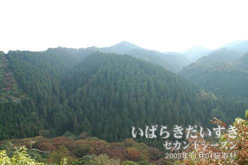 御前山山頂からの景色<br>御前山山頂から南側、赤沢富士、白山方面を眺める。