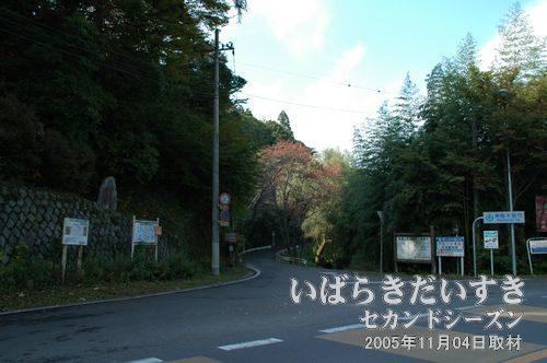 御前山登山道入り口付近<br>低山である御前山の登山道のほか、御前山青少年旅行村方面に通じる山道、林道があります。