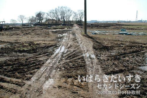 2006年頃の小田城址<br>この頃はまだ、発掘調査などが行われていていました。