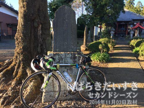 茨城百景 包括風景 ぽっくり不動