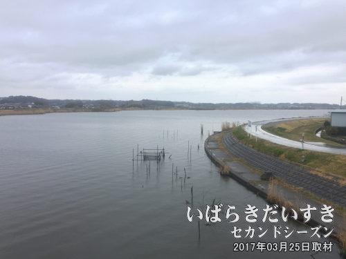 古渡大橋方面から堂崎(右手)方面を眺める<br>向岸は美浦村、陸平貝塚方面。