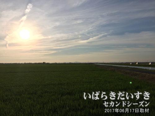 十六島 地域の風景<br>茨城県稲敷市と千葉県香取市一帯の新田開発による集落の総称。遠くに筑波山が見える。