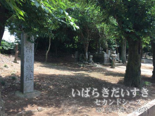 関城跡(国指定史跡)〔茨城県筑西市関舘〕