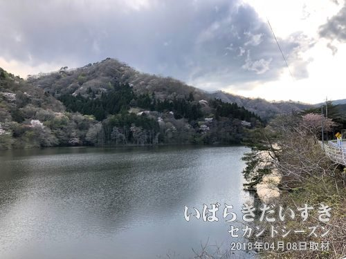 花貫ダム〔茨城県高萩市秋山〕
