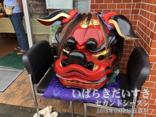 茨城獅子頭彫刻研究会の獅子。