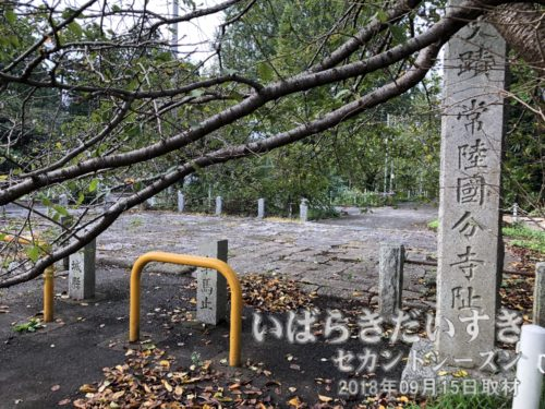 茨城百景 包括風景 常陸国分寺跡<br /> 国分寺は聖武天皇の命で、天平13年(741)国分尼寺とともに国ごとにおかれた僧寺。