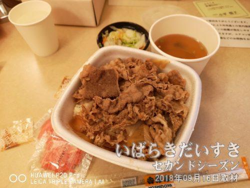 吉野家(水戸駅構内)で買ってきた牛丼。
