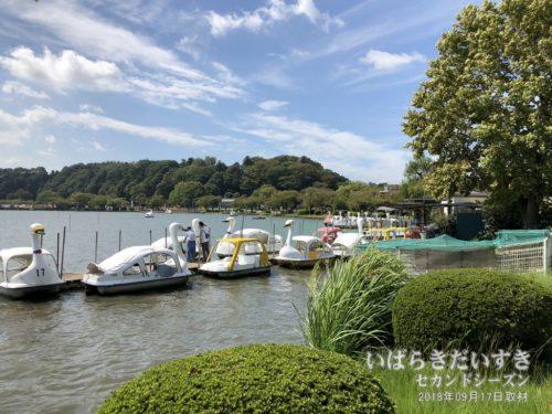 千波湖のボート乗り場