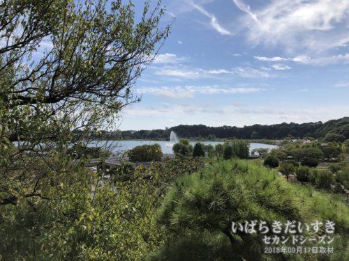 偕楽園から千波湖を望む