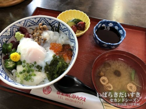 ねばり丼 / 偕楽園レストハウス