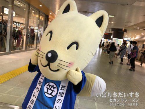 JR水戸駅に、ゆるキャラ 笠間のいな吉くんが営業中。