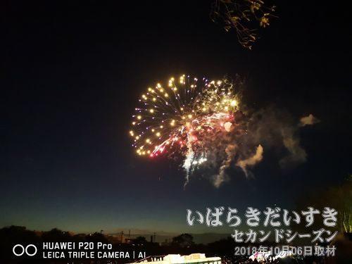 土浦全国花火競技大会〔茨城県土浦市〕<br>毎年10月第一週土曜日に、桜川河川敷で花火大会が催されます。