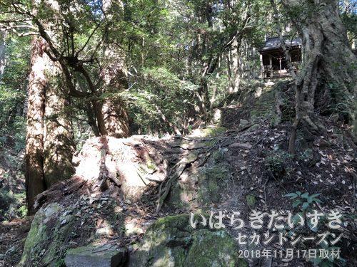 白瀧神社 拝殿<br>急な参拝道には階段が無く、まるで滝をもしたかのように斜めに岩が露出しています。
