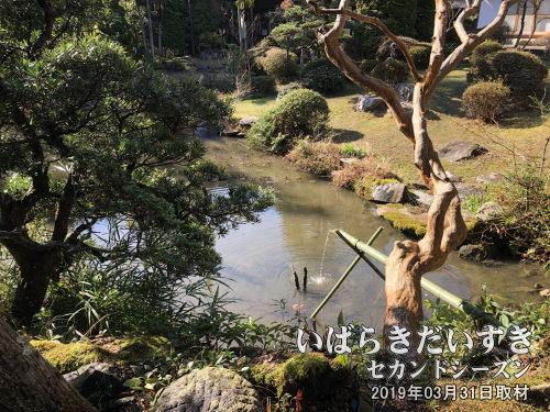 大覚寺 裏見なしの庭