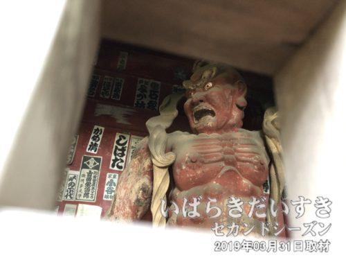 清滝寺 山門 仁王像