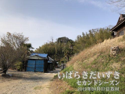 瑞祥院〔茨城県稲敷市江戸崎〕の裏山に五百羅漢像があります。
