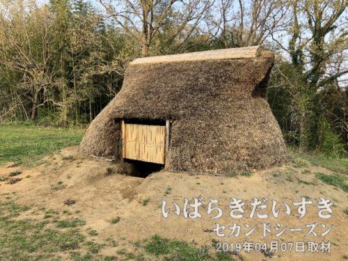 陸平貝塚 復元された竪穴式住居