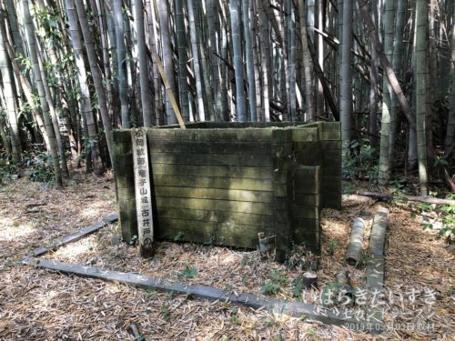 龍子城址 (松岡城址) 古井戸の跡