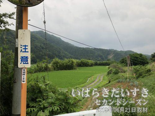 「小京都 嵯峨草 嵐山」と紹介される<br>嵯峨草橋付近に、「小京都 嵯峨草嵐山」と立て看板がある風景。