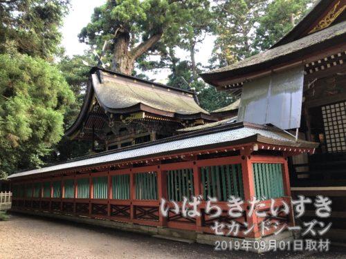 鹿島神宮 本殿(国指定重要文化財)