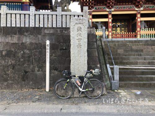 茨城百景_阿波の大杉神社