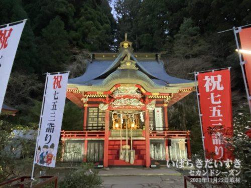 花園神社 拝殿 ライトアップ