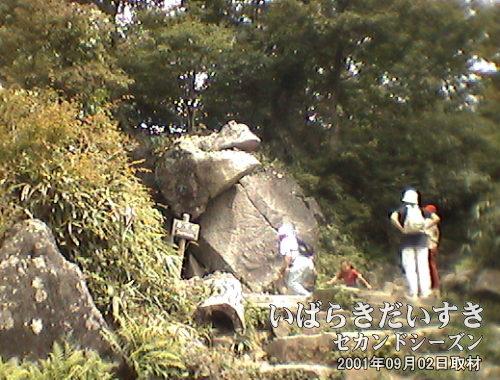 【がま石】<br>写真中央に見える岩のこと。筑波山のがまが、ぱっくり口を開けたように見える。あの口の中に石を投げ入れられると願いが叶うとか。