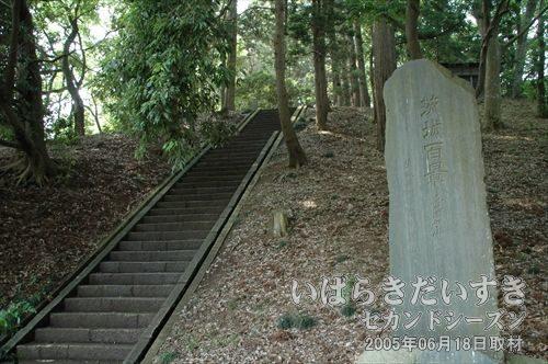 愛宕山古墳(茨城県水戸市)<br>水戸市内最大級の前方後円墳。