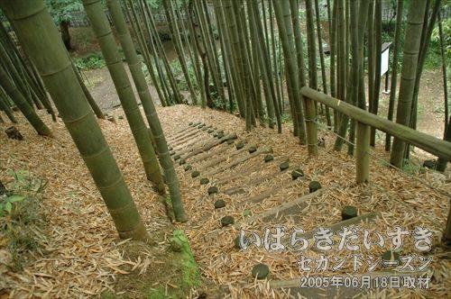 瀧坂_愛宕神社から下る坂