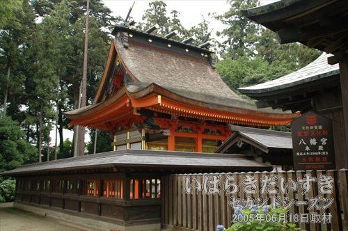 水戸八幡宮 本殿(国重要文化財)<br>入母屋造り、和様・唐様折衷の室町時代の建物。