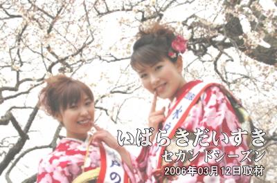 水戸の梅大使による撮影会<br>梅祭りの期間中、一日だけ『大撮影会』が催されます。